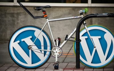 5 Reasons to choose WordPress for your business