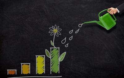 What is Marketing ROI and Why is it Important?